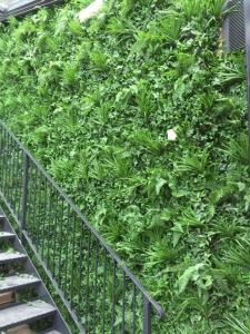 artificial grass living wall
